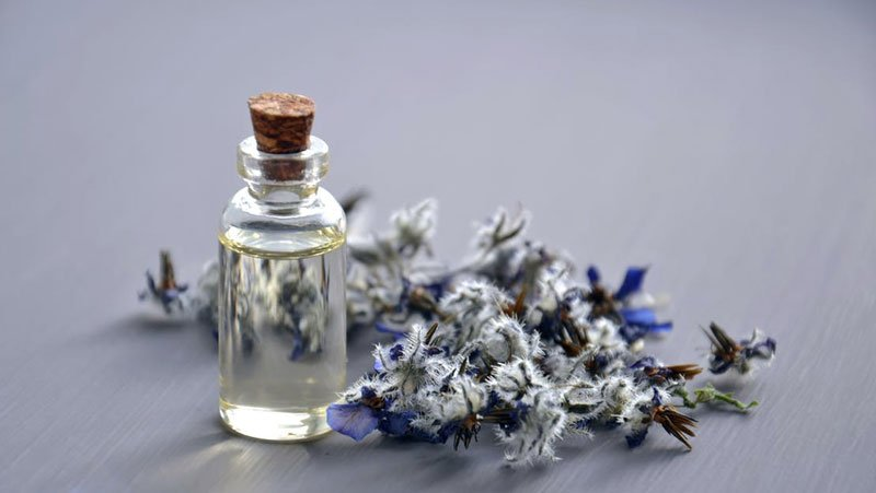 7 Benefits Of Lavender In Beauty Products
